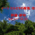イース セルセタの樹海:改の評価・評判・レビュー・口コミまとめ!